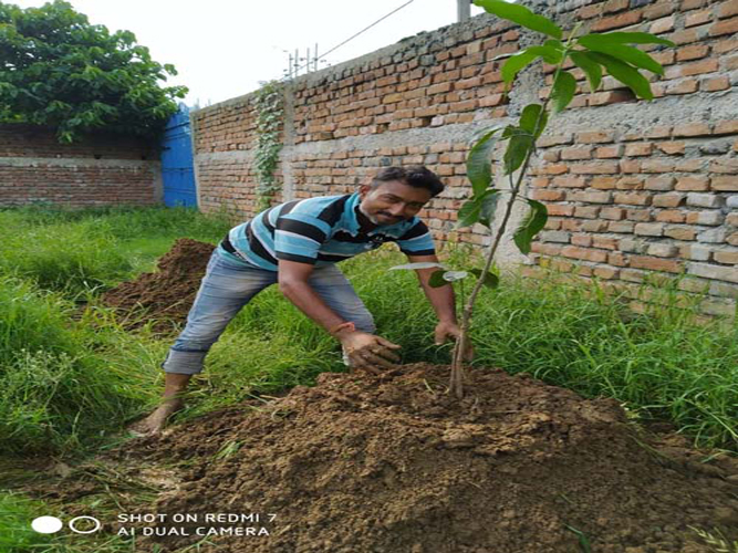Monsoon an opportunity to go green